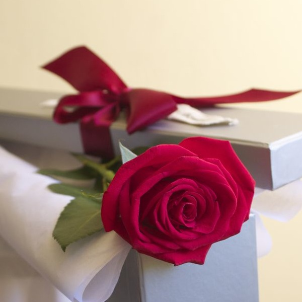 best-flowers-for-men-single-red-rose