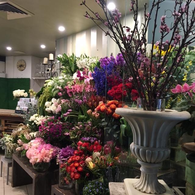our-store-after-sydney-flower-market-visit