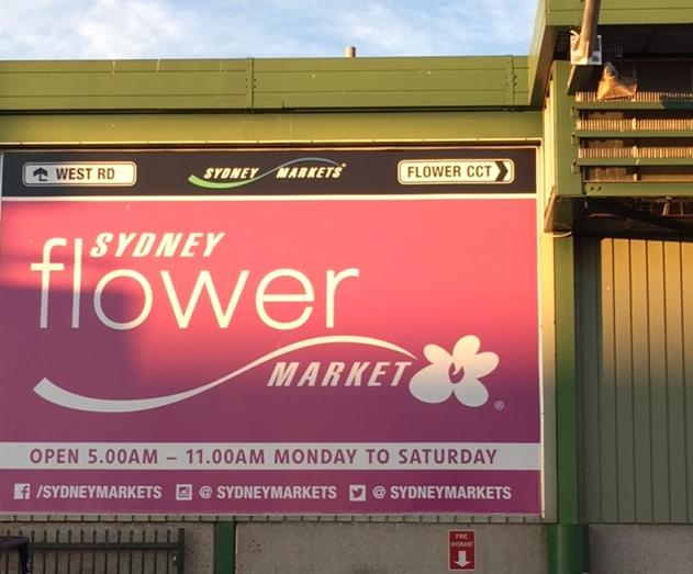 sydney-flower-market-opening-hours.jpg