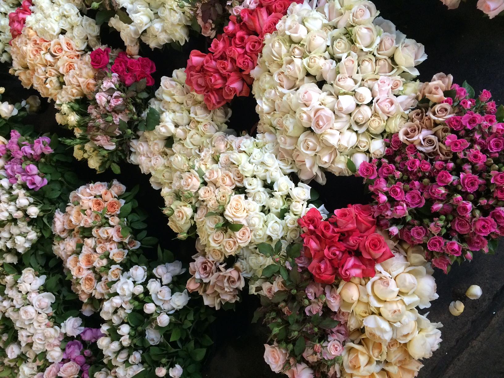 Sydney Flower Market Roses